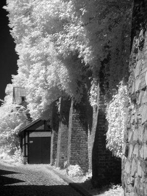 Hinter der Bardowicker Mauer (II)