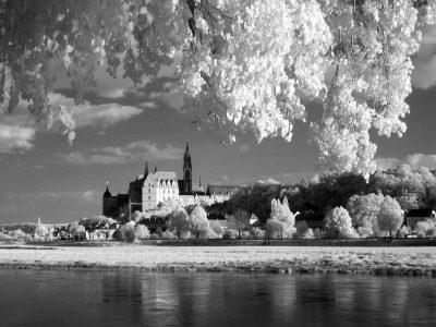 Albrechtsburg (IX)