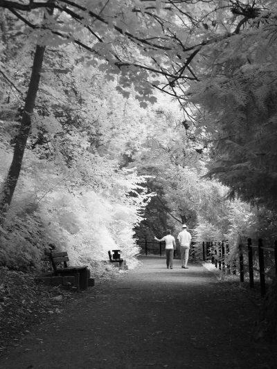 Spaziergang am Wallgraben