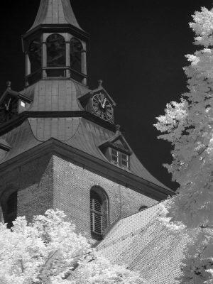 Lüneburg - St. Michaelis (II)