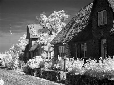 Oldsum - Haus 33