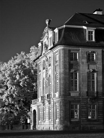 Schloss Münster (V)